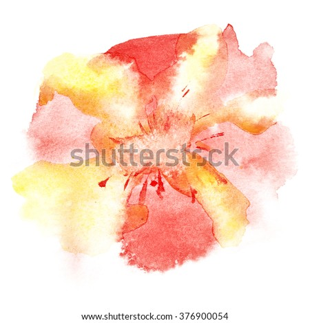 Watercolor flower on the white background - stock photo