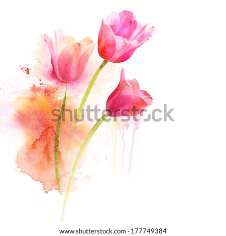Watercolor flowers - stock photo