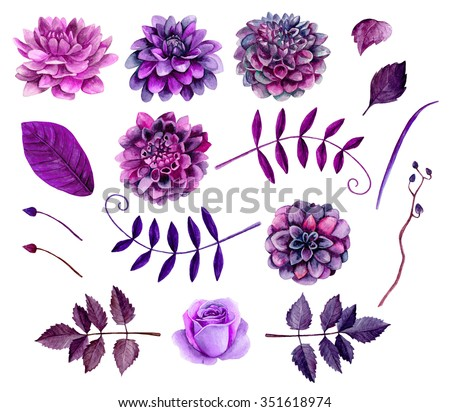 Watercolor flowers clipart . Watercolor flowers shape . Violet flowers clipart . Purple flowers clipart . Watercolor floral clip art . Botanical clipart . Watercolor flowers isolated  - stock photo