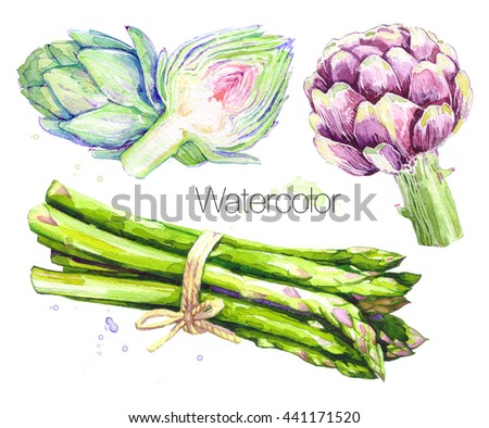 Watercolor Food Clipart - Asparagus and Artichoke. Isolated eco food illustration.Food Clipart.Hand drawn watercolor painting healthy Vegan Food Design. Background for packaging, cards and posters. - stock photo