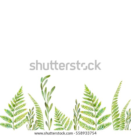 Watercolor forest plants fireflies frame hand stock for Watercolor greenery