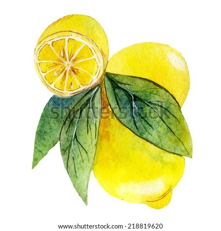 watercolor fruit lemon - stock photo