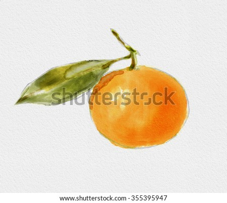 Watercolor fruit of tangerine. Isolated mandarin with leaf. Watercolor style illustration.