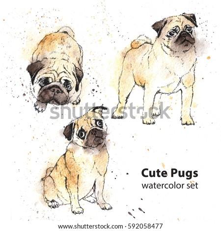 Watercolor hand-drawn bright-colored Cute pugs