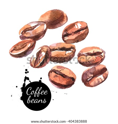 Watercolor hand drawn coffee beans. Isolated natural food illustration on white background - stock photo