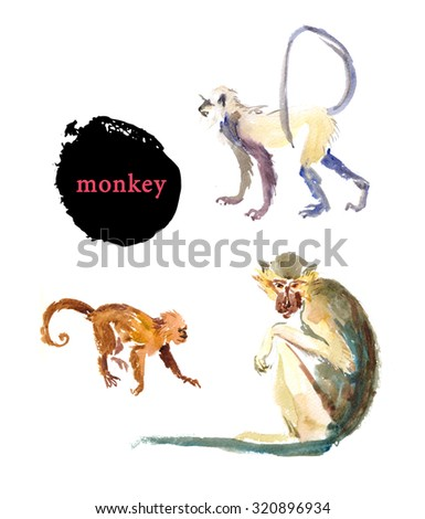 Watercolor hand drawn illustration of cute monkeys isolated on white background. Africa animals portrait. Good for book illustration or print design. - stock photo