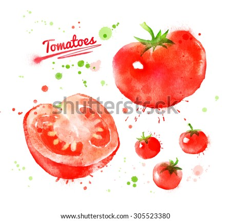 Watercolor hand drawn illustration of tomatoes with paint splashes. Whole, half and cherry. - stock photo