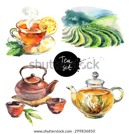 Watercolor hand drawn painted tea illustration isolated on white background. Elements for menu design - stock photo