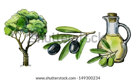 watercolor hand drawn picture of olive and tree - stock photo