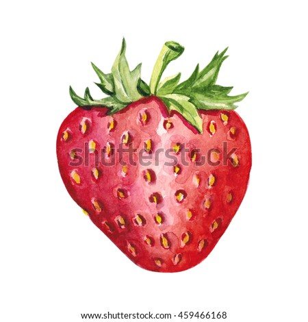 Watercolor hand drawn strawberry