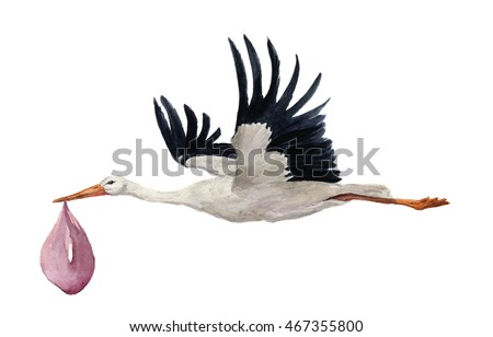 Watercolor hand painted flying white stork with girl baby. Hand painted ciconia bird illustration isolated on white background. For design, prints or background