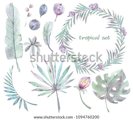 Watercolor Hand Painted Frame Green Tropical Stock Illustration ...