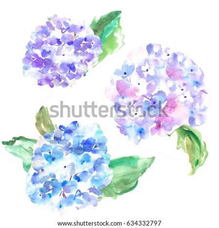 watercolor hydrangeas watercolour hydrangeas in purple and blue painted hydrangea flowers