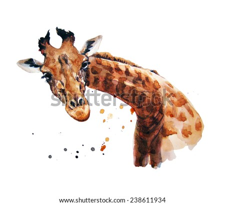 watercolor illustration about giraffe