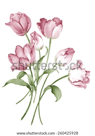 watercolor illustration bouquet in simple white background - stock photo