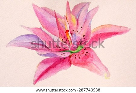 Watercolor illustration lily