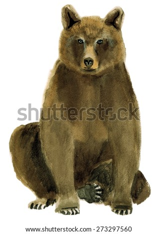 Watercolor illustration of a bear