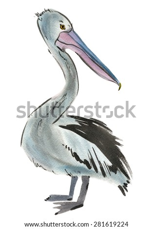 Watercolor illustration of a bird Pelican - stock photo