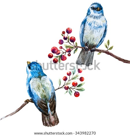 watercolor illustration of blue bird on a branch with red berries, vintage postcard, isolated object - stock photo