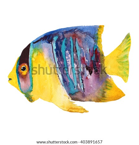 Watercolor illustration of sea fish. Angelfish. Summer holidays raster design element.