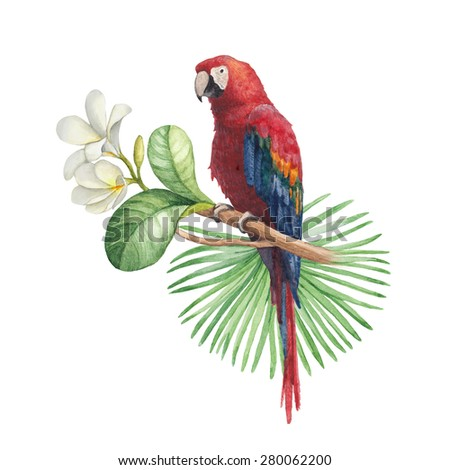 Watercolor illustration of tropical flowers and parrot - stock photo