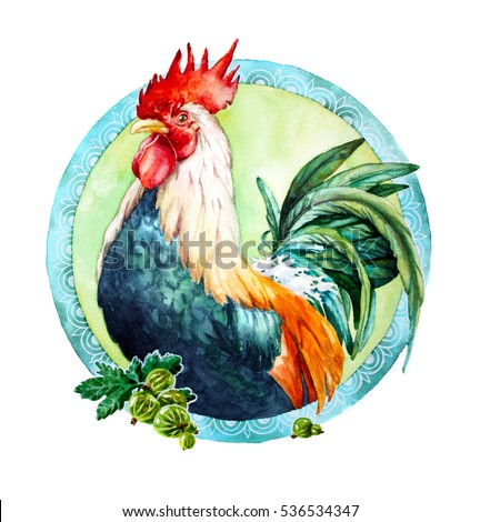 watercolor illustration with rooster; symbol of 2017 year