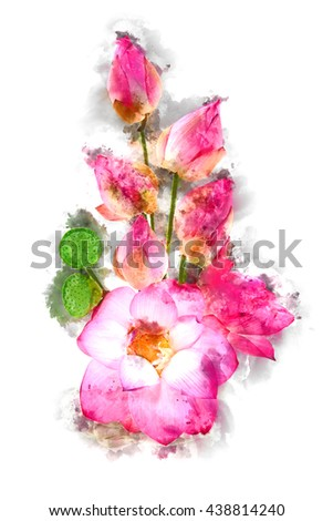 Watercolor image of Flower arrangements with lotus on white background. - stock photo