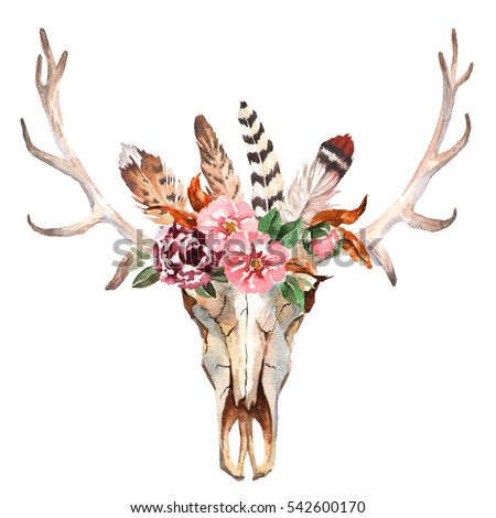 Watercolor Isolated Deers Head With Flowers And Feathers On White Background Boho Style Skull