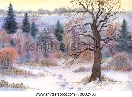 Watercolor landscape. Old tall oak in a forest clearing in the winter snow valley - stock photo
