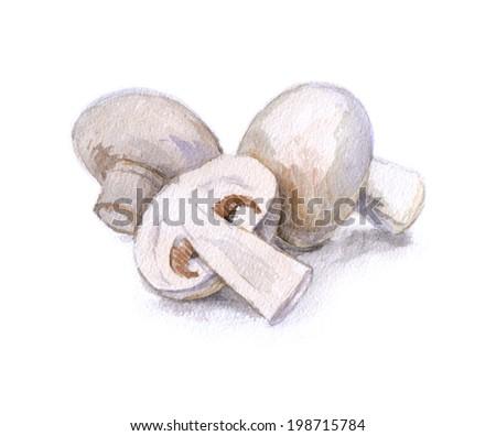 watercolor mushrooms, natural food - stock photo