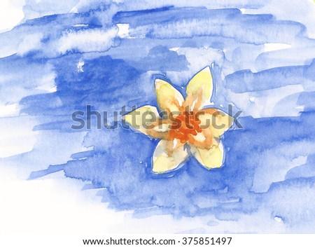 portfolio di baharhun su shutterstock watercolor narcissus daffodil flowers on blue lake