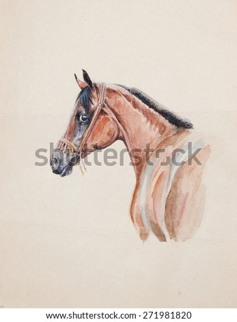 watercolor of arabian horse on old paper - stock photo