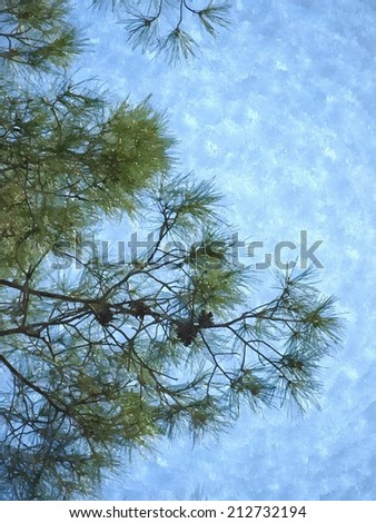 Watercolor of young branches of pin tree in spring against blue sky background.