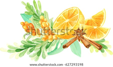 Watercolor orange fruit, spices and sea buckthorn branches composition. Hand drawn flavored tea winter bouquet. Anise, cinnamon, orange fruit, sea buckthorn twigs and berries composition.
