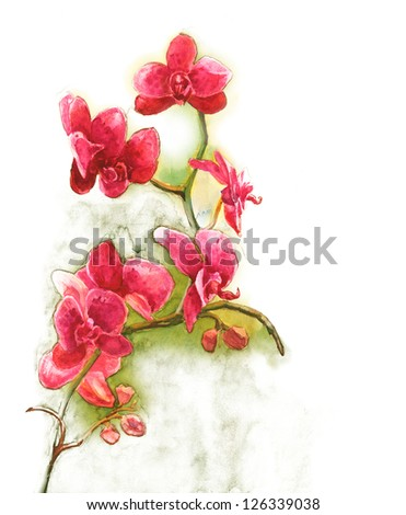 Watercolor  Orchid - stock photo