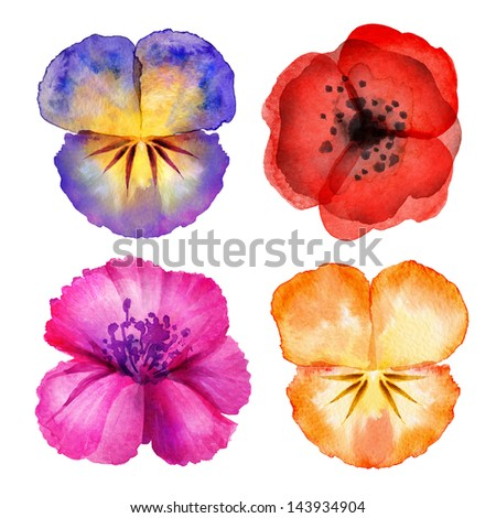 watercolor painted flower design elements isolated on white background - stock photo