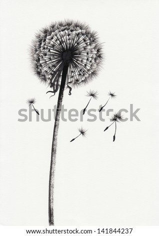 Watercolor painted image of dandelion with ray floretes flying away