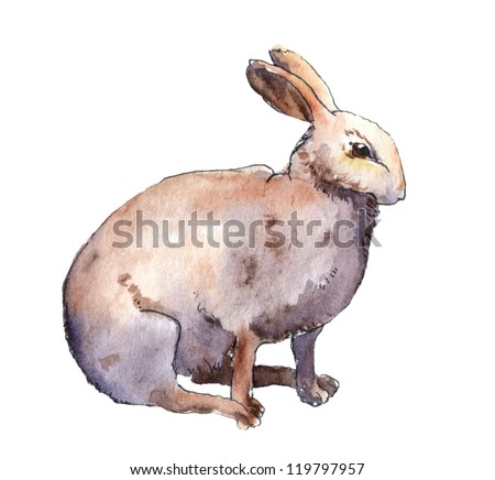 Watercolor-painted white rabbit