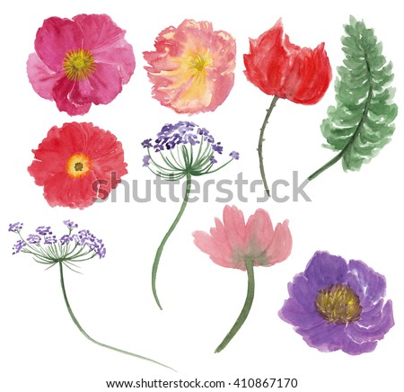 Watercolor painting flower and leaves isolated on white. Design for invitation, wedding or greeting cards