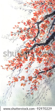 Watercolor painting. Hanging branches of fragrant cherry blossoms - stock photo