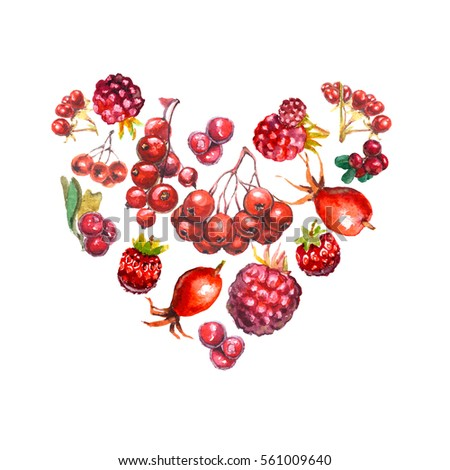 Watercolor painting heart shape various fresh berries isolated on white. Design for valentine's day. Symbol of love.