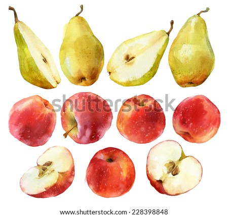 Watercolor painting of apples and pears full and halves isolated on white background