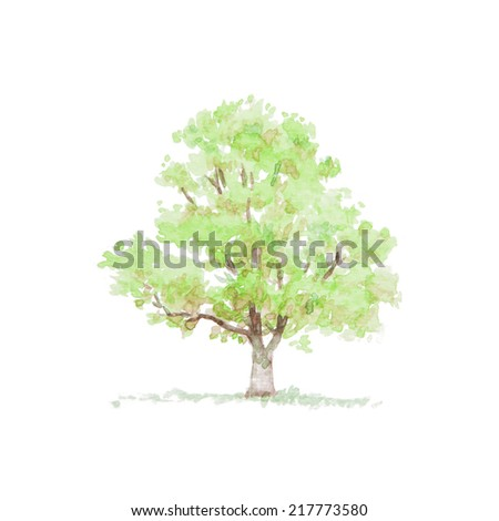 watercolor painting of tree - stock photo