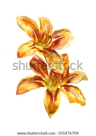 watercolor painting of two red lilies - stock photo