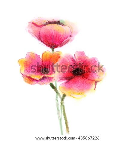Watercolor Painting Poppy Flower Isolated Flowers On White Background Pink And Red