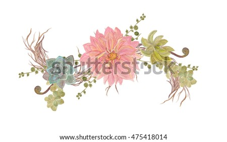 watercolor painting succulent plants composition with flowers on tree branch, floral bouquet illustration, isolated on white background