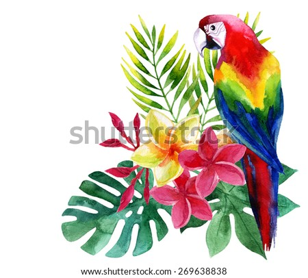 Watercolor parrot with exotic flowers and leaves  - stock photo