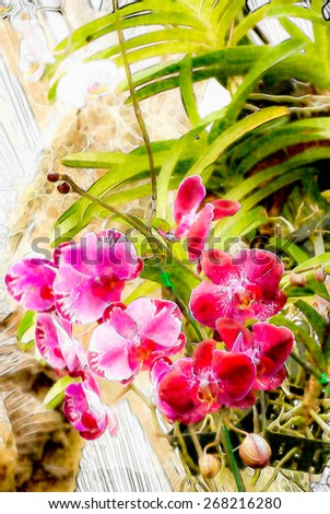 Watercolor Pink orchid art background - stock photo