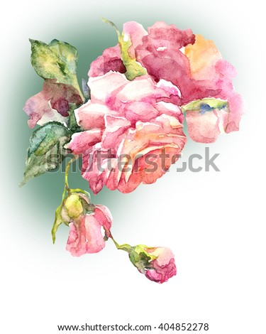 Watercolor pink Roses. Hand painting illustration. - stock photo