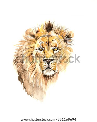 watercolor portrait of lion  - stock photo